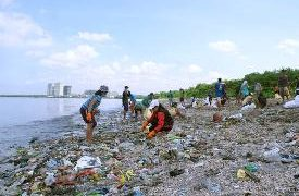 Marine Pollution Management Fundamentals